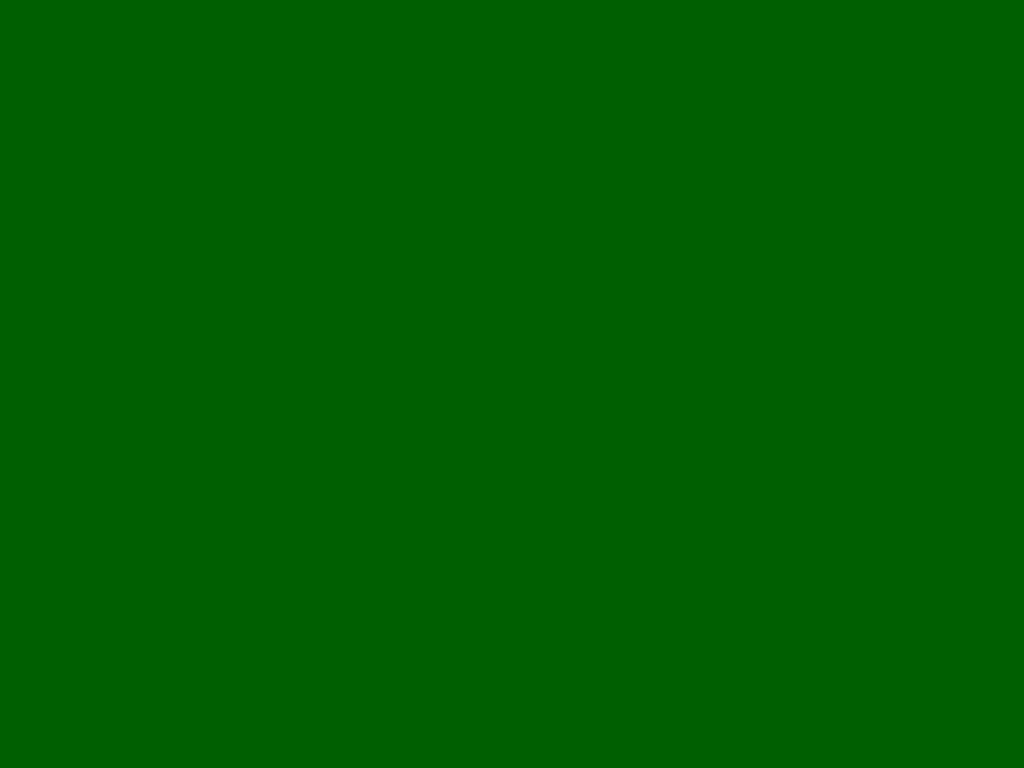 Background of leaves green bush close up low key soft