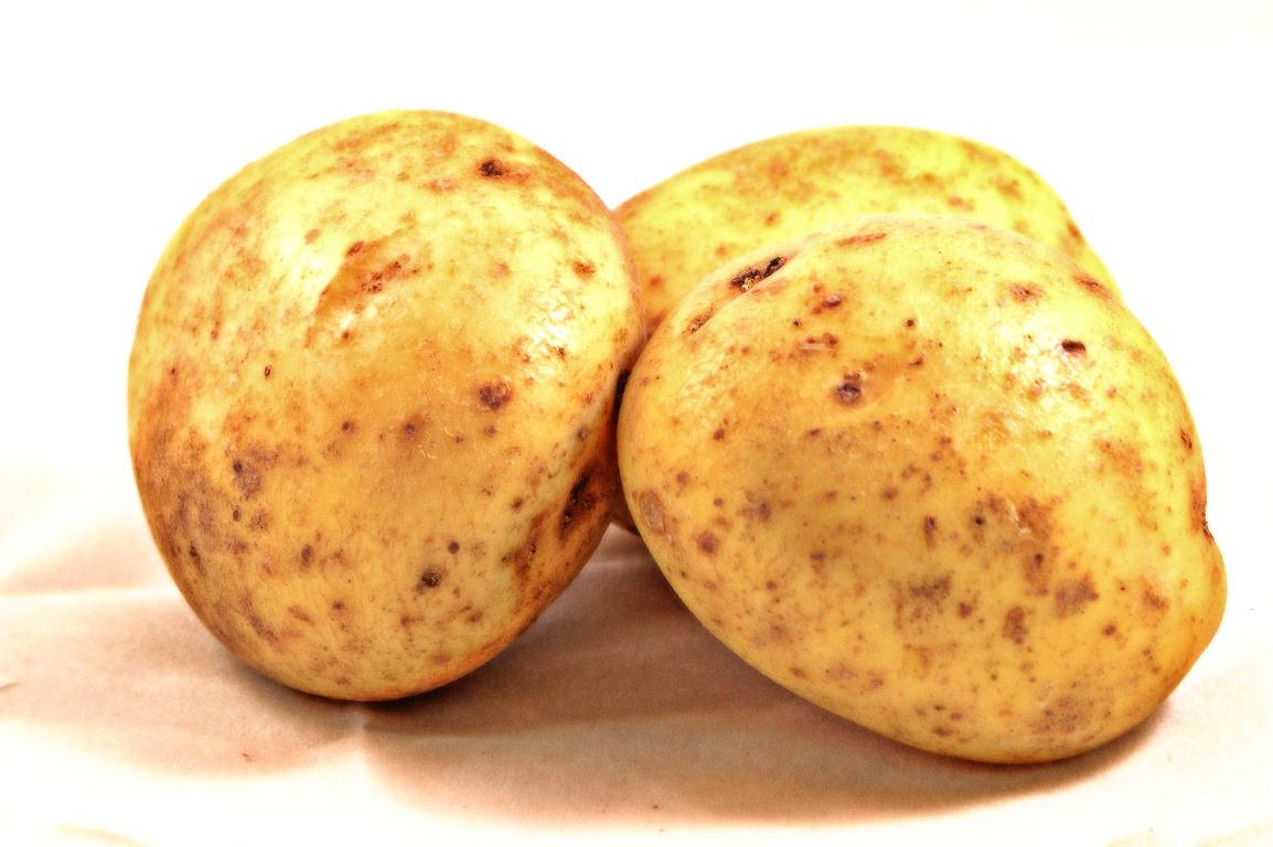 Potato Clip Art Potato photos (clip art)